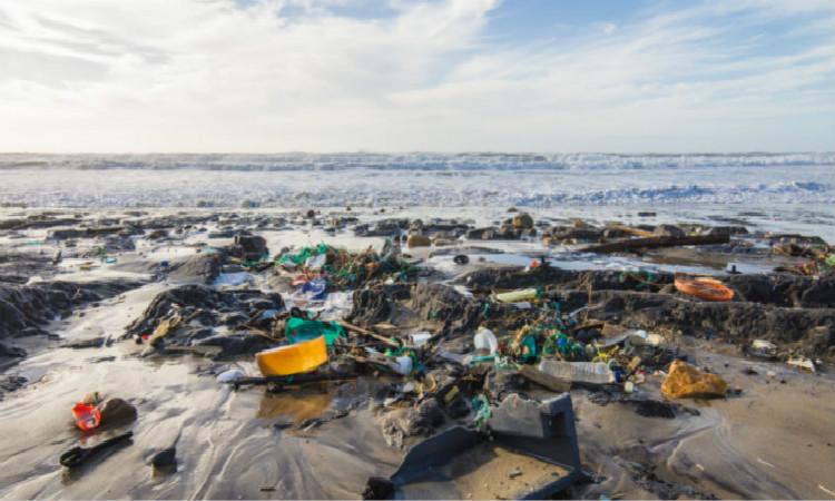 外媒:区块链技术或将解决全球海洋塑料污染危机